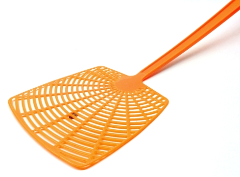 fly-swatter